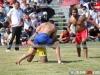toronto-kabaddi-cup-2014-103