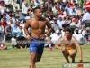 toronto-kabaddi-cup-2014-116